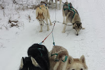 Knik Museum and Musher's Hall of Fame, Wasilla, United States