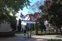 Paleface Park, Temora, Australia