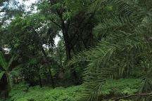 Bakkhali, West Bengal, India