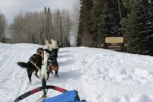 Snow Buddy Dog Sled Tours, Steamboat Springs, United States