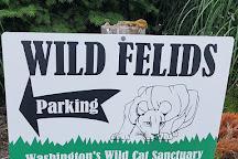 Wild Felid Advocacy Center of Washington, Shelton, United States