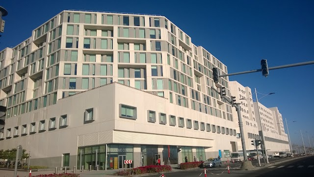 NEW YORK UNIVERSITY STAFF ACCOMODATION ABU DHABI
