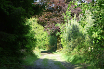 Heidebos, Wachtebeke, Belgium