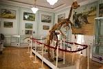 Музей Геологии, улица Тараса Шевченко, дом 11 на фото Ташкента