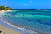 Virgin Kayak Tours, St. Croix, U.S. Virgin Islands