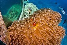 Fish Eye Underwater Observatory, Piti, Guam