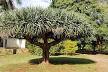 National Botanical Gardens, Harare, Zimbabwe