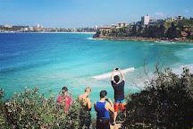 Manly Surf Guide, Sydney, Australia