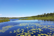 Lake Laurentian Conservation Area, Sudbury, Canada