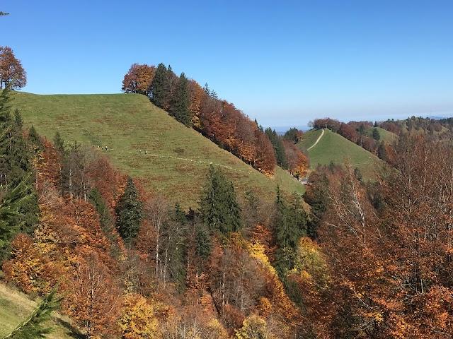 Schnebelhorn