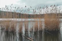 Lago d'Averno, Pozzuoli, Italy