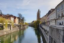 Piranske Soline, Ljubljana, Slovenia