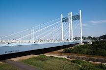 Koremasa Bridge, Fuchu, Japan