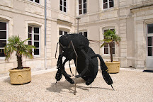 Musee d'histoire naturelle de La Rochelle, La Rochelle, France