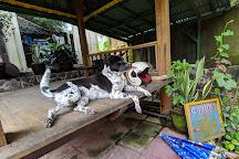 Cantika Zest, Singakerta, Indonesia