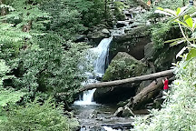 Grotto Falls Trail, Great Smoky Mountains National Park, United States