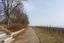 Terroir f Volkach, Volkach, Germany