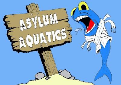 Asylum Aquatics