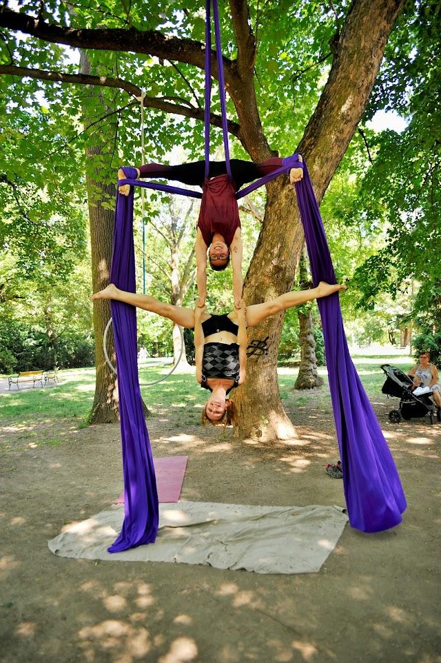 Bistro anatomy Yoga & Akrobacie & Nový cirkus