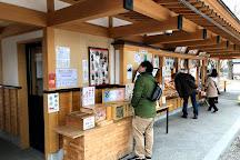 Ueda Joseki Park, Ueda, Japan