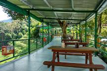 Tropical Fruit Farm, Batu Ferringhi, Malaysia