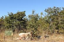Lusaka National Park, Lusaka, Zambia