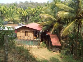 Dandeli Jungle Stay Resort Homestay Hotels