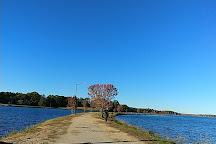 Lake Paul Wallace, Bennettsville, United States