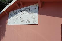 La Casa Del Pesce, Briatico, Italy