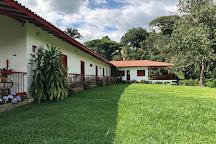 Coffee Tour Hacienda Venecia, Manizales, Colombia