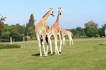 Knuthenborg Safaripark, Maribo, Denmark
