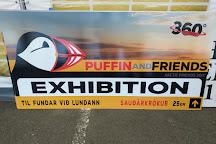 Puffin and Friends, Saudarkrokur, Iceland