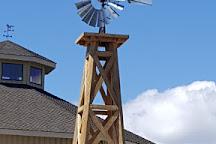 Wild Horse Renewable Energy Center, Ellensburg, United States