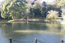 Gempei Pond, Kamakura, Japan