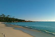 Aloha Dreaming Massage, Binalong Bay, Australia