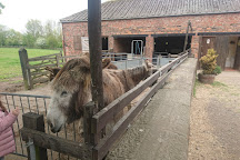 Newham Grange Country Farm, Middlesbrough, United Kingdom