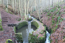 Dunnottar Woods, Stonehaven, United Kingdom