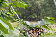 Beagle Ridge Herb Farm, Wytheville, United States