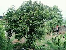 Bachpan jamshedpur
