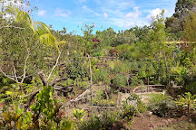 Jardin Tau Kiani Rapa Nui, Hanga Roa, Chile