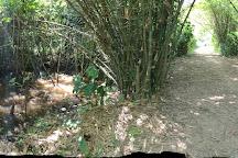 Peperpot Nature Park, Paramaribo, Suriname