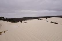 Little Sahara, Kangaroo Island, Australia