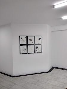 Crisis Galeria 6