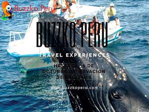 Buzzko Perú Travel Experiences EIRL 1