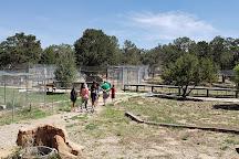 Wild Spirit Wolf Sanctuary, Ramah, United States