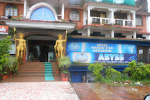 Visit Abyss Marine Aquarium On Your Trip To Verna Or India Inspirock