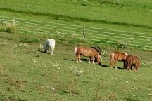 Land of Little Horses, Gettysburg, United States