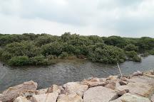 Jaffna Eco Park, Jaffna, Sri Lanka