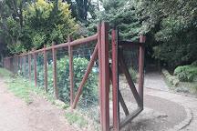 Park Prochelle, Valdivia, Chile