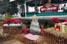 Kula Country Farms, Kula, United States
